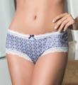 Affinitas Intimates Erin Hipster Panty 925
