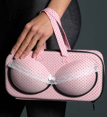Bra Travel Bag