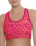 Champion Double Dry Absolute Workout Sports Bra 7847