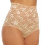 Glam Shaper Brief Panty Image