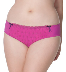 Curvy Kate Dreamcatcher Brief Panty