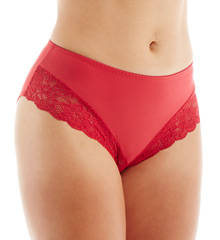 Elila Microfiber & Stretch Lace Panties 3309