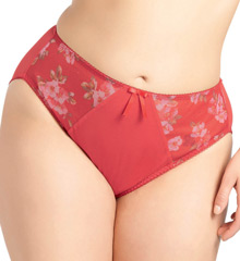 elomi Renee Brief Panty EL8445