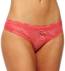 Chic Lace with Organdy Trim Brief Panty