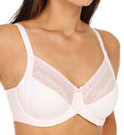 Lilyette Enchantment 3 Section Mesh Minimizer Bra 434