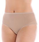 Gossamer Mesh Modern Brief Panty Image