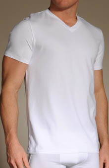 Basix V Neck T-Shirt