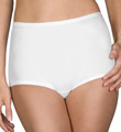 Pants & Daywear Nylon Spandex Brief Panty Image