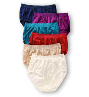 Fruit Of The Loom Nylon Brief Panties - 6 Pack 6DN2202