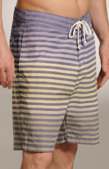 Piers Brosnin Boardshort