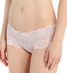 Forbidden Lace Hipster Brief Panty Image