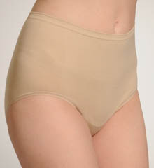 Vanity Fair Seamless Brief Panty 13210