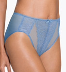 Retro Chic Brief Panty