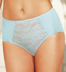Lace Finesse Brief Panty Image