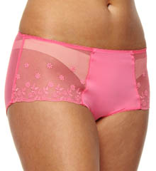 Instant Polish Brief Panty