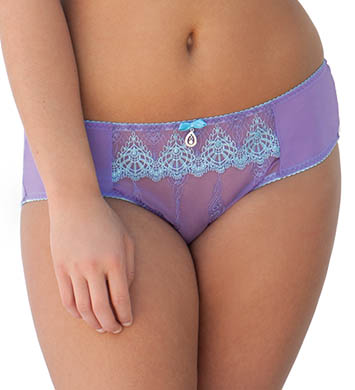 Curvy Kate Jewel Brief Panty