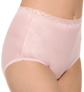 Hanes Nylon Brief Panty - 5 Pack