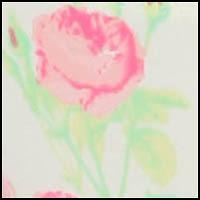 Botanical Floral Creme