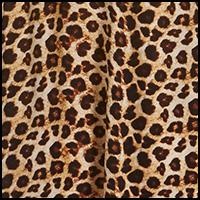 Leopard Tease