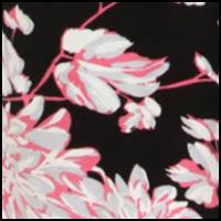 Midnight Dahlias Pink