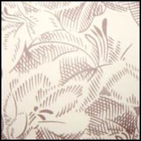 Etched Lily Print