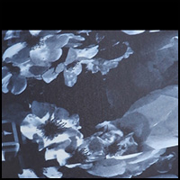 Odyssey Floral/Black