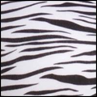 Zebra BW