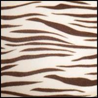 Zebra IE