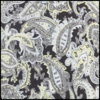 Evening Grey Paisley