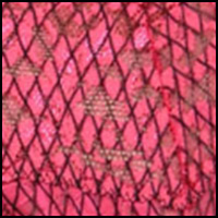 Fishnet Vivid Coral