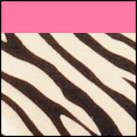 Warm Taupe Zebra