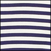 Splendid Navy Stripe