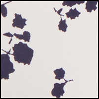 Egret Flowers