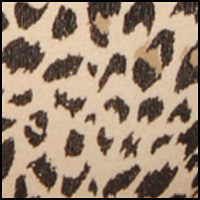 Soft Taupe Leopard