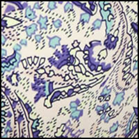 Paisley Paradise Print