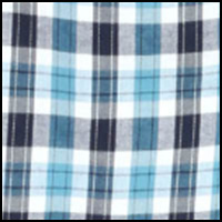 Austin Plaid/Blue