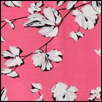 Dahlias Geranium Pink