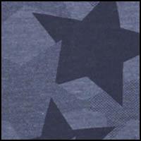Blue Star Print