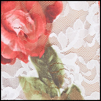 Rose Red-Multi