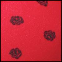 Camera Red-Y Rose