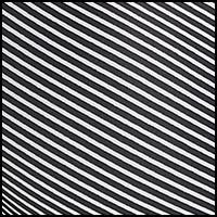 Classic Stripe Print