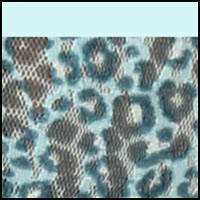 Blue Sky Leopard