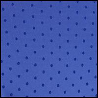 Bleu Stylo