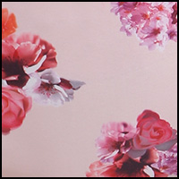 Blush/Floral
