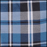 DG Blue Point Plaid