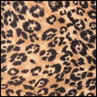 Modern Cheetah Print