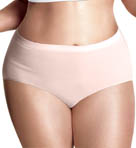 Plus Size Seamless Comfort Brief Panties - 3 Pack