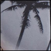 Sunset Palm Black