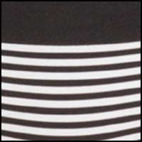 Black Body Stripe