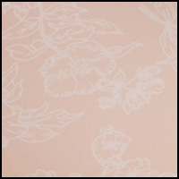 Evening Blush /Gloss